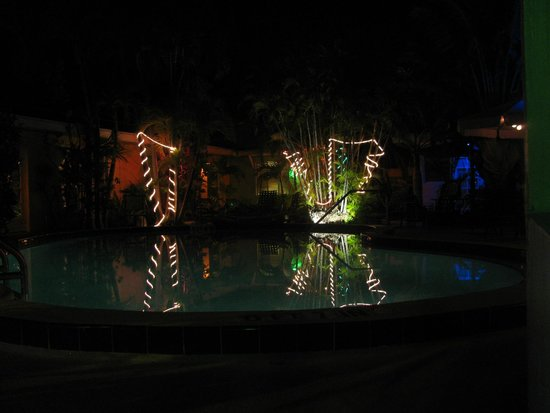 Alexander Palms Court: pool at night