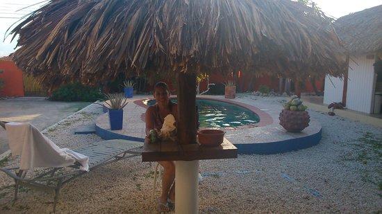 Villa Punta Salina: En el área de la piscina.