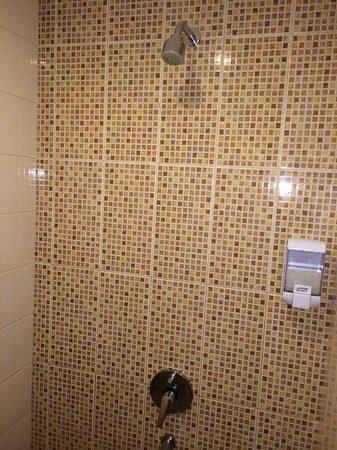 Amaris Hotel Nagoya Hill: Strong pressure shower with shampoo dispenser. (Soap n toothbrust in slipper pack)