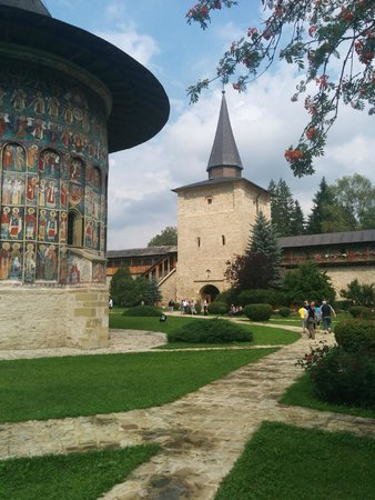 Hello Bucovina Day Tours