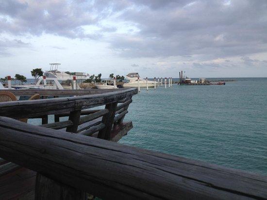 Tortuga Bay Hotel Puntacana Resort & Club: View from La Yolla restaurant