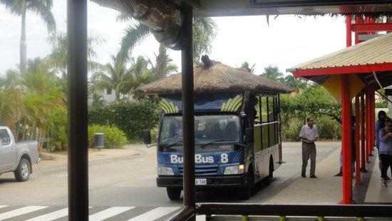 Sofitel Fiji Resort & Spa: Bula Bus