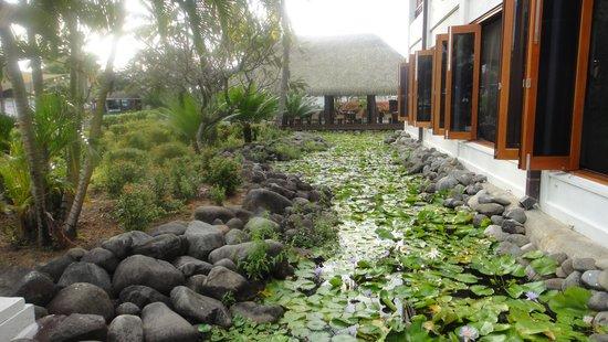 Sofitel Fiji Resort & Spa: Beautiful grounds