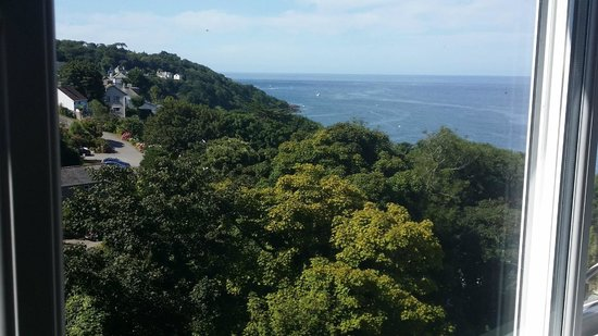 Cottage Hotel: Great unadvertised view!