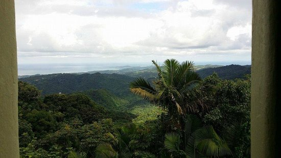 Yokahu Observation Tower: Incredible view
