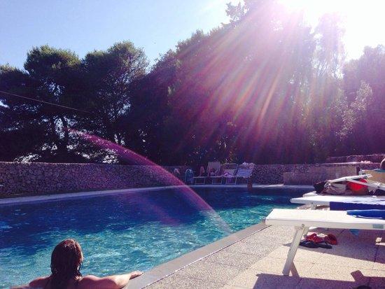 Masseria Bosco di Makyva: La piscina ...