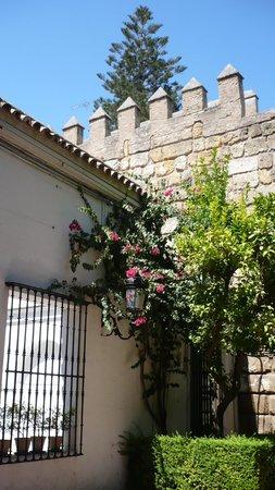 Alcázar: entrance