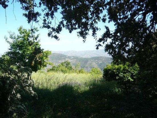 Cortijo Prado Toro: View across the valley from the entrance