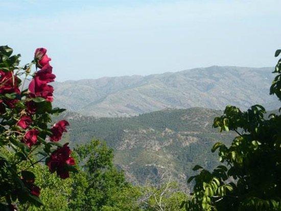 Cortijo Prado Toro: View across the valley
