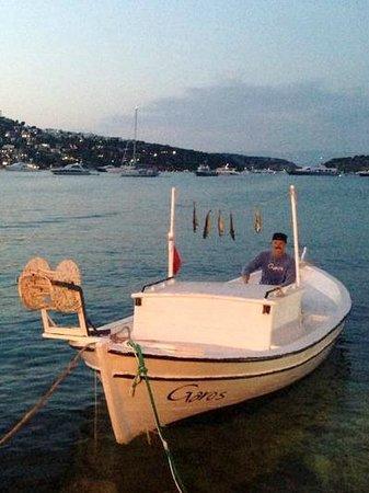 Garo's: Balıkçımız :)