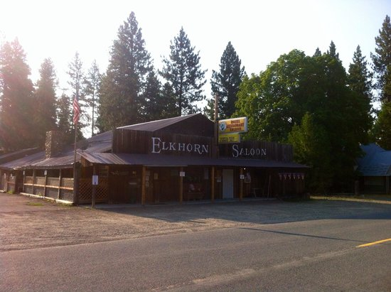 Elkhorn Saloon: Poor quality photo taken in the morning. But this is the Elkhorn, rich in history.