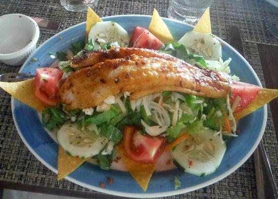 Rockhouse Hotel: Fresh fish Salad :)