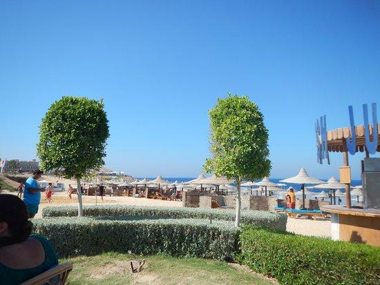 LTI Akassia Beach: beach bar
