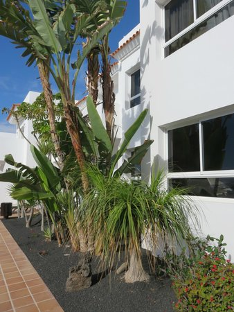 Barcelo Castillo Beach Resort: Premium Block 4000 with seperate pool