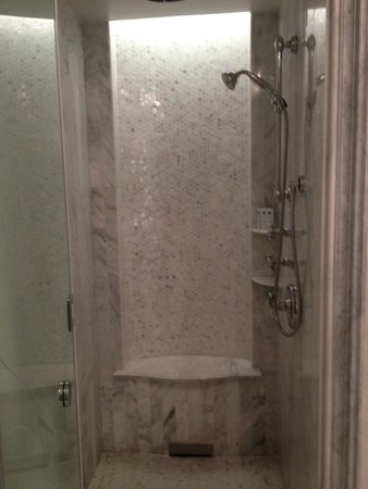 The St. Regis Abu Dhabi: Shower Column