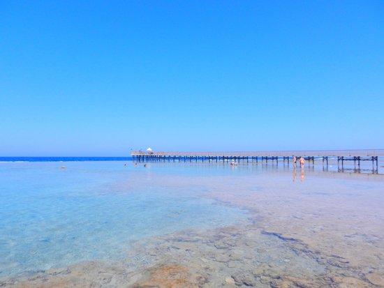 Resta Reef Resort: Pontile