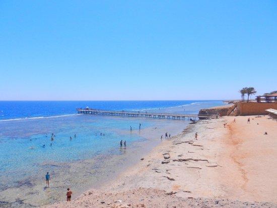 Resta Reef Resort: vista dal bar della spiaggia