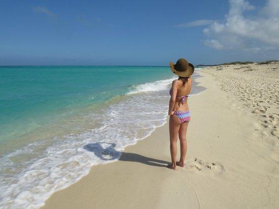 Melia Buenavista: plage paradisiaque