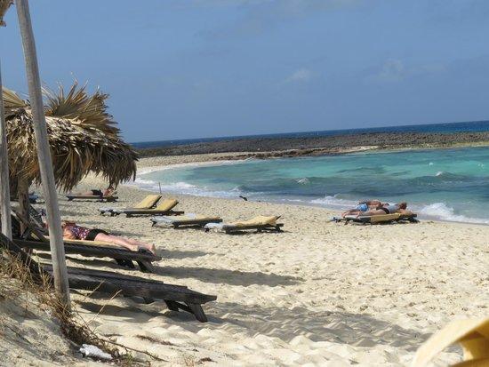 Melia Buenavista: plage