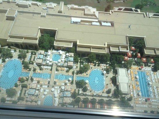 Wynn Las Vegas: pool view