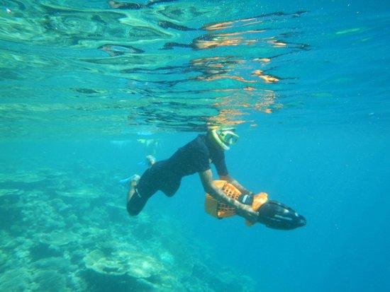 Conrad Maldives Rangali Island: Go out Snorkeling