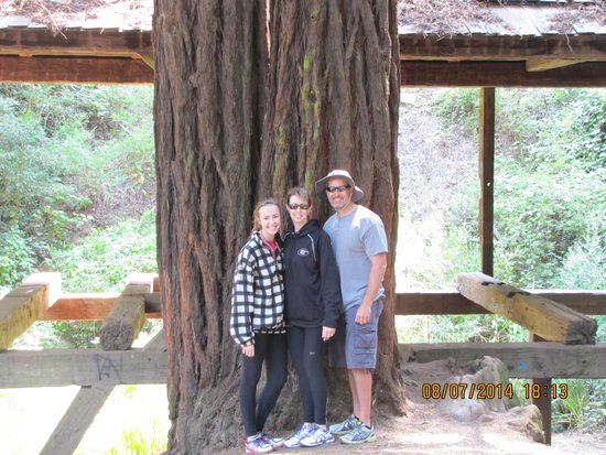 Blazing Saddles Bike Rentals and Tours : Me, wife, and youngest daughter with one of the large redwoods in Old Mill Park