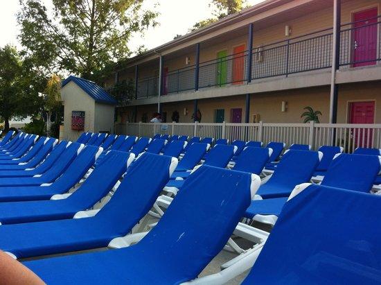 Islander Inn: Plenty of lounge chairs for those who like sunbathing!