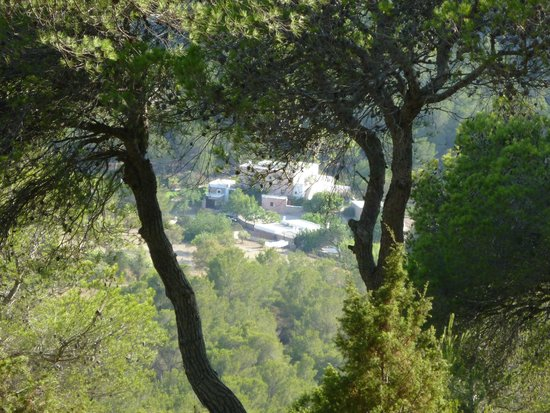 Hotel Rural Can Pujolet : Aussicht