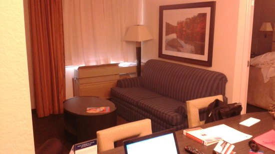Candlewood Suites Jersey City: Large Couch