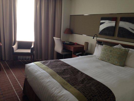 Radisson Hotel Narita: 雙人房間