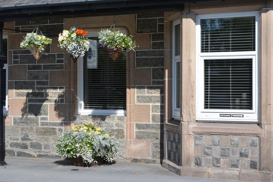 Clune House: Lovely Hanging Baskets in Bloom