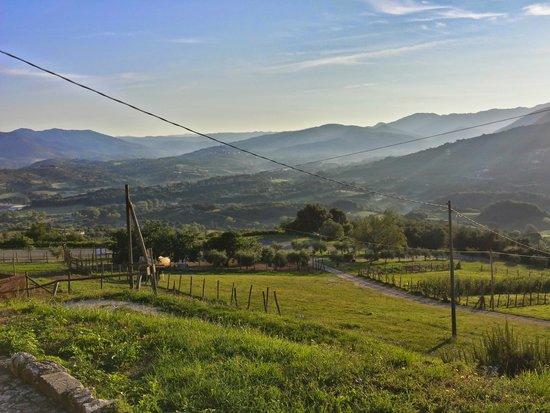 Agriturismo La Cerra: Panorama