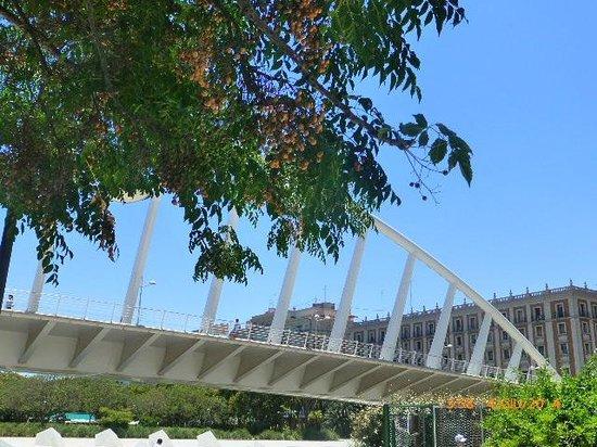 Ciudad de las Artes y las Ciencias: parco del Turia
