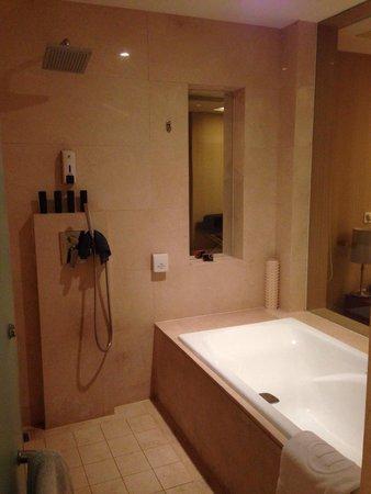 Pullman Beijing South : Nice shower....