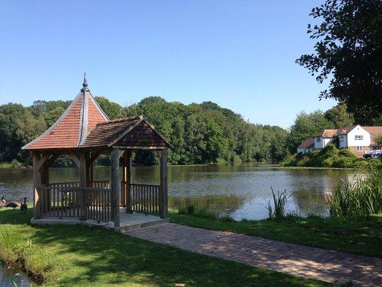 PowderMills Country House Hotel: Lake view