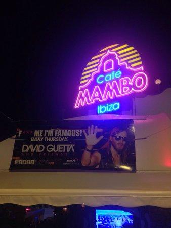 Cafe Mambo: David guetta pre party with guetta and Martin garrix!