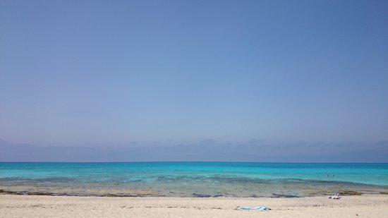 Chrissi Island : mer