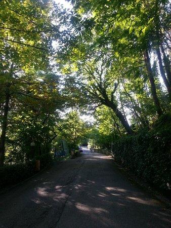 Villa di Carlo Spa&Resort : parco
