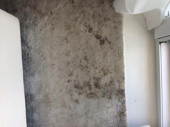 "Hotel Zhero: the ""clean"" rug"