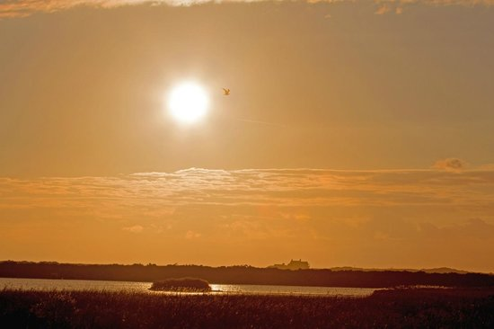 RSPB Titchwell Marsh at Dawn, July 2014