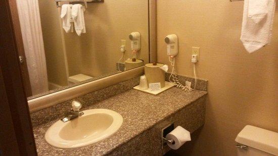 Comfort Inn: Il bagno