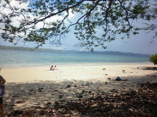 Andaz Costa Rica Resort At Peninsula Papagayo: Playa