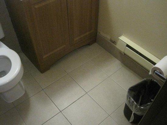 King's Arms Motel: Moldy bathroom
