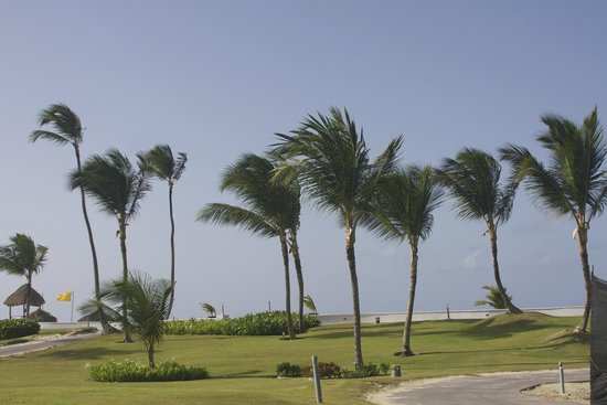 Hard Rock Hotel & Casino Punta Cana: Beach view
