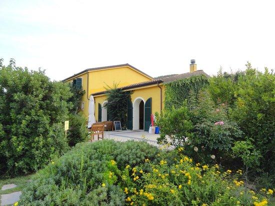 Wine Resort Leda' d'Ittiri : the resort