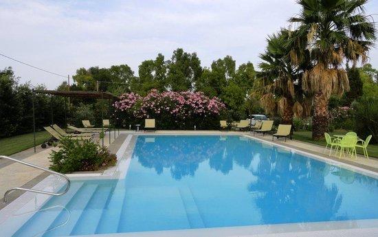Wine Resort Leda' d'Ittiri : the pool