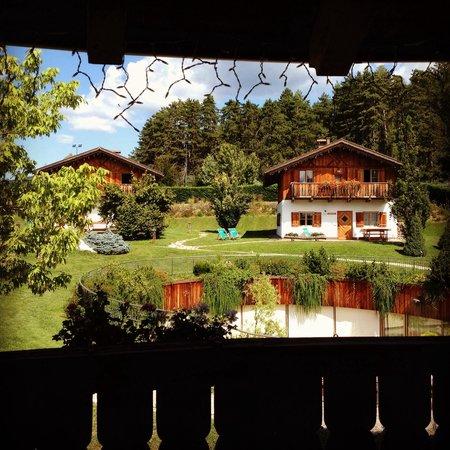 Pineta Naturamente Hotels: Vista dalla suite soldanella