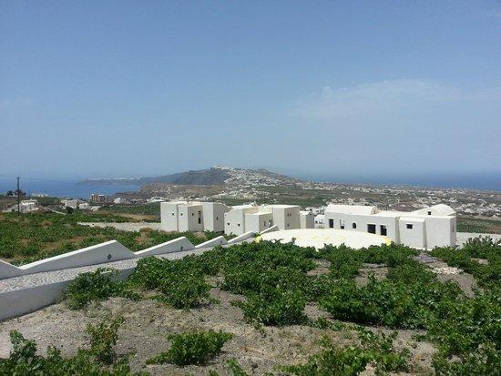 Landscape - Pyrgos Restaurant: -