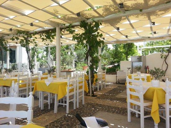 Pyrgos Restaurant: -
