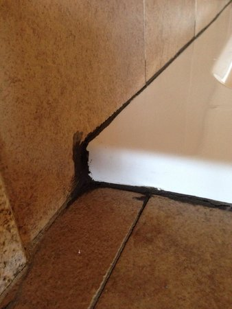 La Quinta Inn & Suites Woodward: This seemed to be a general them; broken tiles, mold & stained carpeting. For such a new hotel,